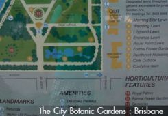 The City Botanic Gardens, Brisbane