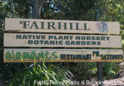 Fairhill Native Plants & Botanic Gardens