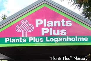 Plants Plus Nursery