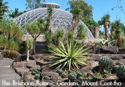 The Brisbane Botanic Gardens, Mount Coot-tha