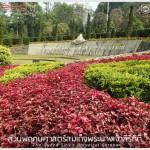 สวนพฤกษศาสตร์สมเด็จพระนางเจ้าสิริกิติ์ – QSBG